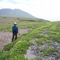 白雲岳(背後)はパス、北海岳に向かう