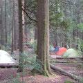山から下りるとテントサイトがありました。