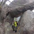 こんな岩もありました。