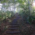 階段状の登山道、長く続きます。