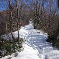 湯の登山道。
