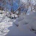 雪がもっこりです。