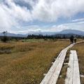 ずっと歩きたい、苗場の湿原
