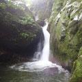 ほとんどの滝は滝壺をもち、時には腰まで水につかって滝にとりつきました。
