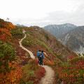右から北葛山、蓮華岳。左に針の木岳も少し。