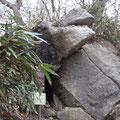 筑波山と言ったら、ガマでしょう。「ガマ石」