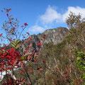 ナナカマドの赤い実が青空に映える。