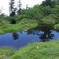 登り始めて6時間。うわさのクワガタの形をしている池に出合う。