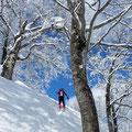 樹氷と青空。