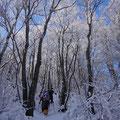 きれいな青空の下での雪山ハイク。