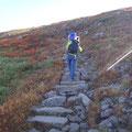 月山への階段。