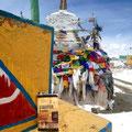 Le Sauveteur' au Ladakh, à 5300 m d'altitude. Merci à Virginie.