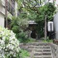 *白いツツジが映える駐車場に通じる盛久ギャラリーお庭裏。作品を運びだし、無事盛岡展終了。
