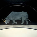 'rhinoceros' engraved, moon gold leaf 20cms wied