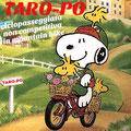 Taro-Po Ciclopasseggiata n on competitiva