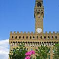 Palacio Vechio Florencia Italia