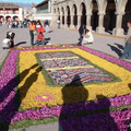 Alfombra de flores en Ayacucho