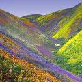 Cerro colorido