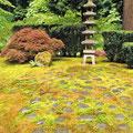 Jardin Japonés -Portland Oregon