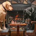 partidita de ajedrez