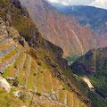 Huainapichu lateral