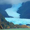 Glaciar Skua Chile
