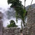 Fog on Machu Picchu