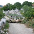Trogir Croacia