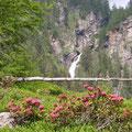 Cascada Rosa