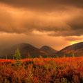 Tundra en Alaska