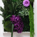 Cadre collection 2015 avec rose mauve et hortensia violet