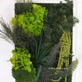 Cadre collection 2015 avec hortensia vert
