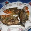 Pirañas zum Abendessen