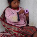 Maria - das jüngste Mitglied der Kooperative