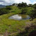 Die Hügel um Matagalpa