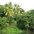 Ausblick von der Insel aus