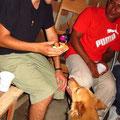 plötzlich war Milan der beste Freund von Madu (Hund)