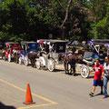 Pferdekutschen am Parque Central