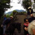 Die Caballeros mit ihren Pferdchen