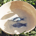Vogeltränke frostsicher