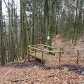 Steinerne Rinne Buchenberg, Holzsteg,  Aufnahme 2016