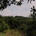 Blick zum Kleinviehberg-Sender