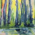 Bäume am Teich, 50 x 60 cm, Aquarell
