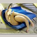 Femme au Canapé Bleu