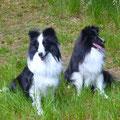 Madison und Bailey