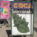 Dans les province de Slata et Jujuy, la coca n'est pas interdite. Sa mastication est culturelle.