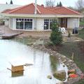 Teich mit Entenhaus