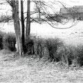 46_1109_Bauernhof Gelger 1991, heute Gartencenter Augsburg