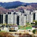 46_2979_Reh-Bauloh vom Hamacher gesehen  um 1975