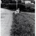 35_705_heute Berliner Allee Ecke Sudetenstraße, im Hintergrund der Elseyer Kindergarten 1957